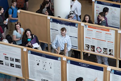 Students look at research posters at University Crossing