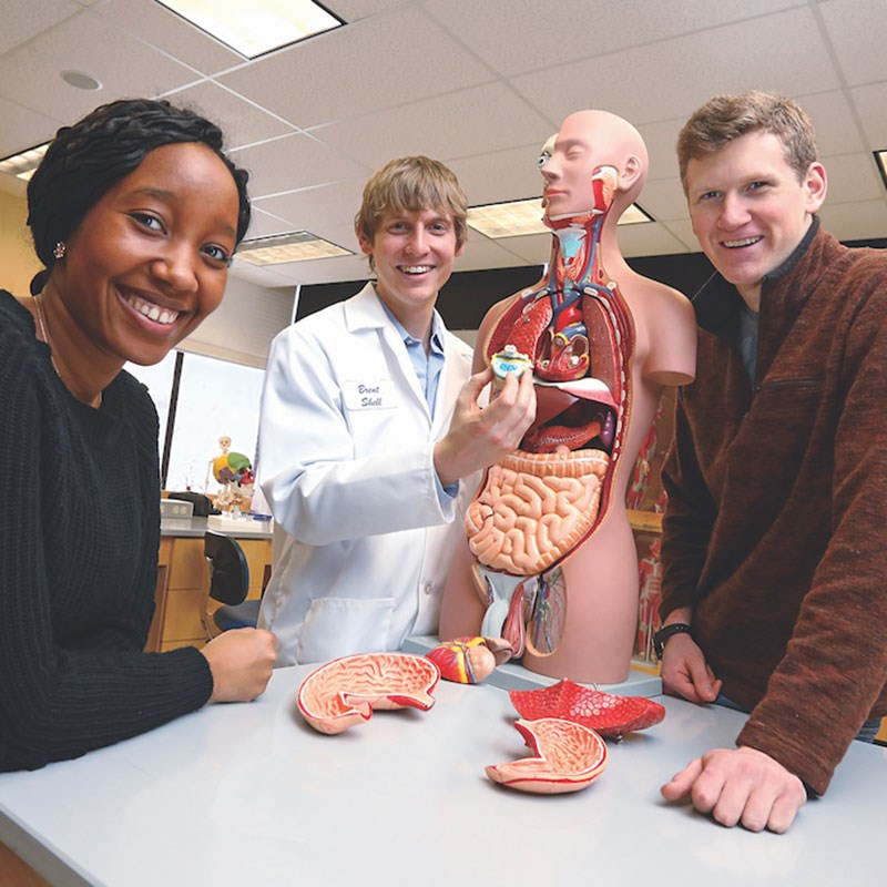 A female and two male students work with a anatomy dummy