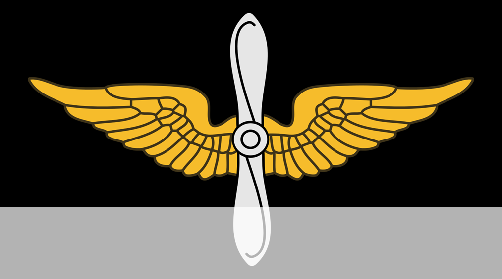 Aviation Insiginia