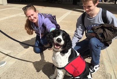 University therapy dog Ben with students