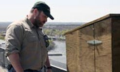 A Lowell citizen observing a biologist nestbox.