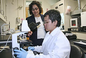 Asst. Prof. Bridgette Budhlall, left, working with Ph.D. candidate Tatiya Trongsatitkula in the lab.