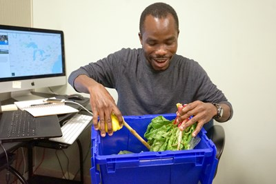 A student looks at the vegetables in his bin
