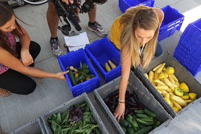 Student employees sort vegetables to be delivered