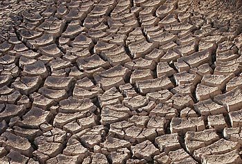 Parched, cracked earth is one of the telltale signs of below-normal precipitation.