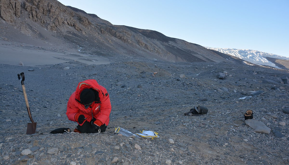 Scientist digs in Anarctica