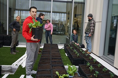 Student Akbar Abduljalil helps plant the rooftop garden