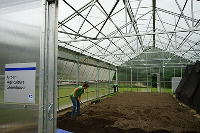Mill City Grows staff spread compost inside the greenhouse