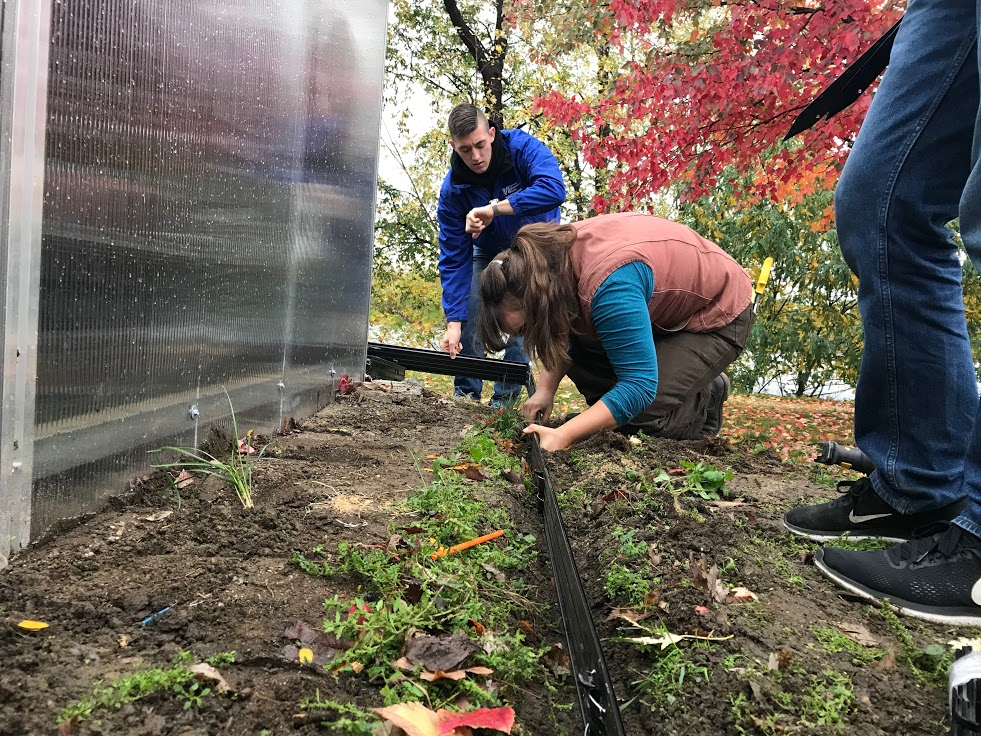 Students and Mill City Grows Employees Working Side-by-Side at East Campus Greenhouse