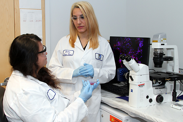 Asst. Prof. Gulden Camci-Unal, right, and Ph.D. student Sanika Suvarnapathaki use a Zeiss Axio fluorescence microscope to take images of heart cells that are grown in the biomaterials they are developing at the Saab Emerging Technologies and Innovation Center on North Campus.