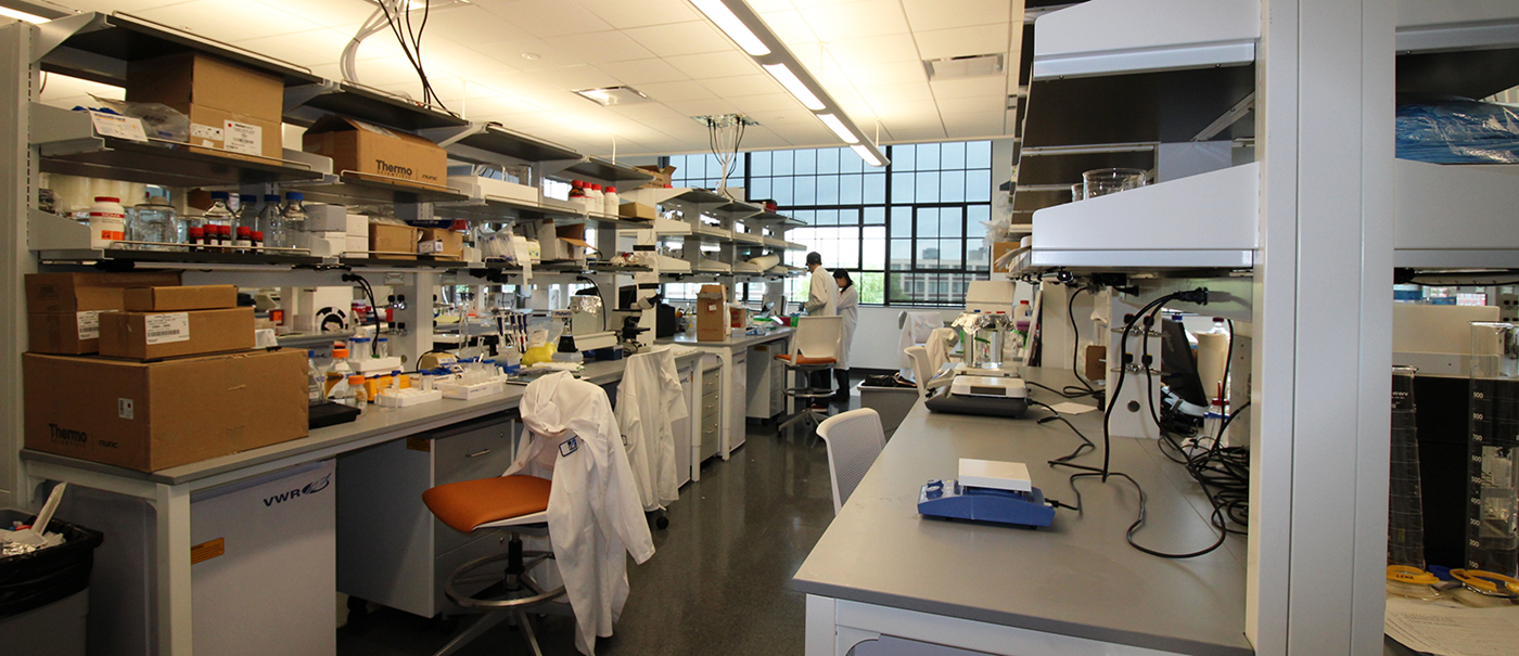 Interior picture of Canal St. lab