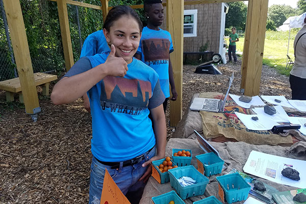 Destany Medina, a student at The Career Academy, got a summer job through the Career Center of Lowell with Mill City Grows, a food justice organization.