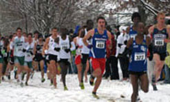Jeff Viega lead the way as men's cross country finished 13th overall at NCAA Championship in Louisville, Ky.
