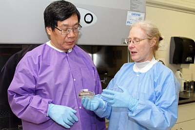 Profs. Yuyu Sun and Nancy Goodyear working in the lab