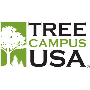 TreeCampus_USA