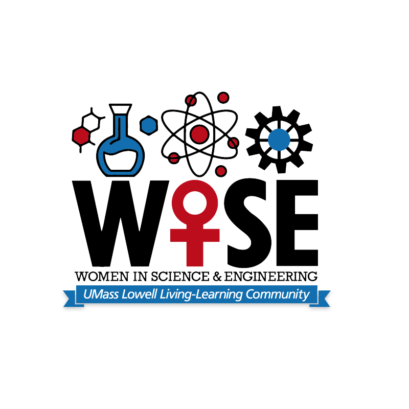 WISE LLC logo