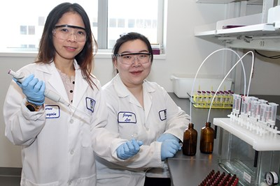 Civil and Environmental Engineering Asst. Prof. Sheree Pagsuyoin with graduate student Jiayue Luo in the lab in January.