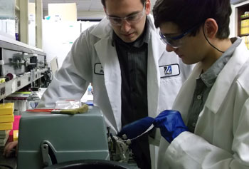 Andrew Sanginario, right, prepares brain tissue slices during his co-op work with Ph.D. student Brian Patuto.