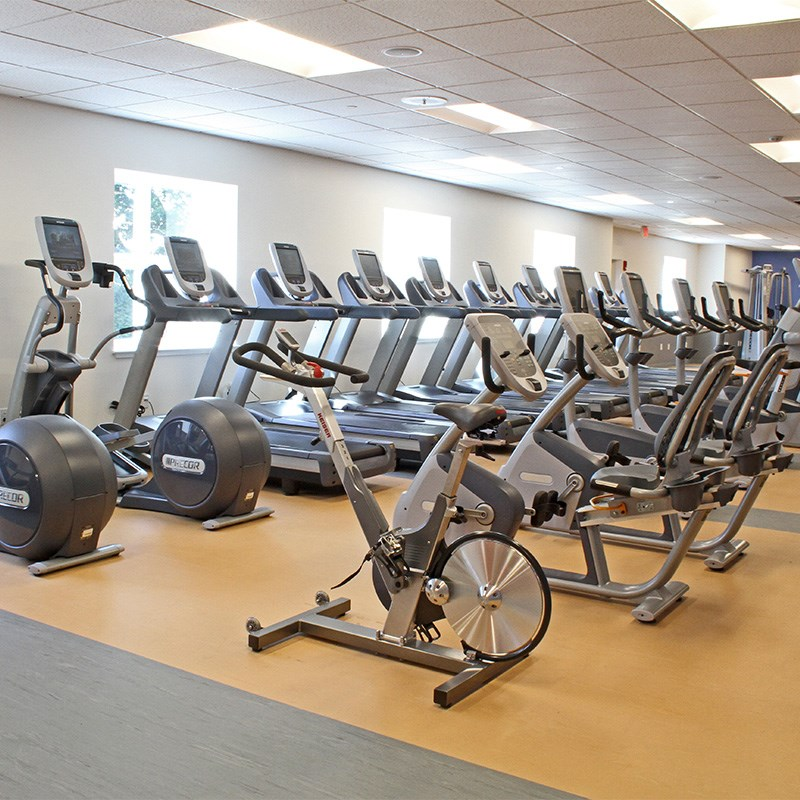 Fitness bikes and treadmills in the Riverview Fitness Center