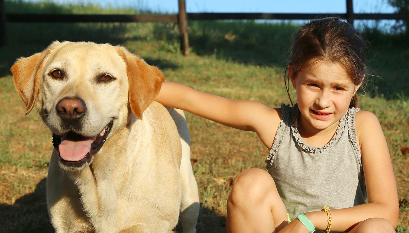 young girl with yellow lab