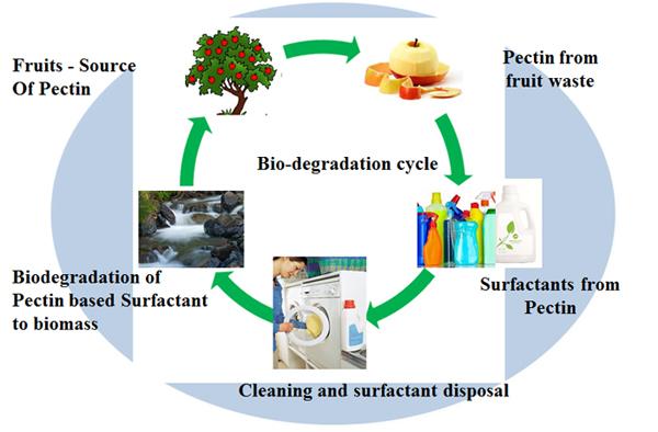 Approach Green Biosurfactants Epa Sponsored Programs