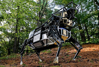 Among Boston Dynamic's robots is BigDog, a bot that can lumber across rough terrain and carry 340-pounds.