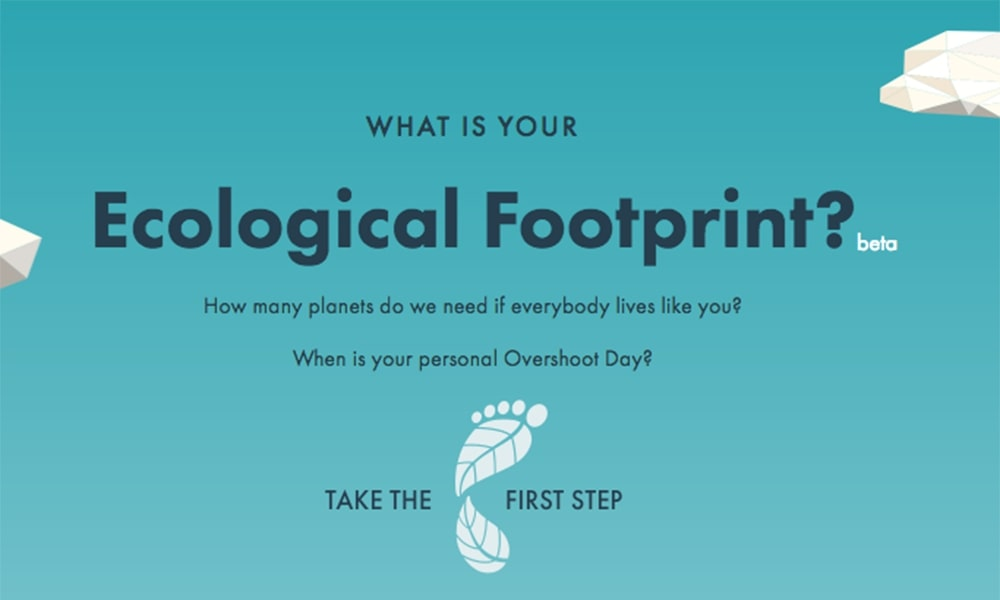 Ecological Footprint Calculator Logo