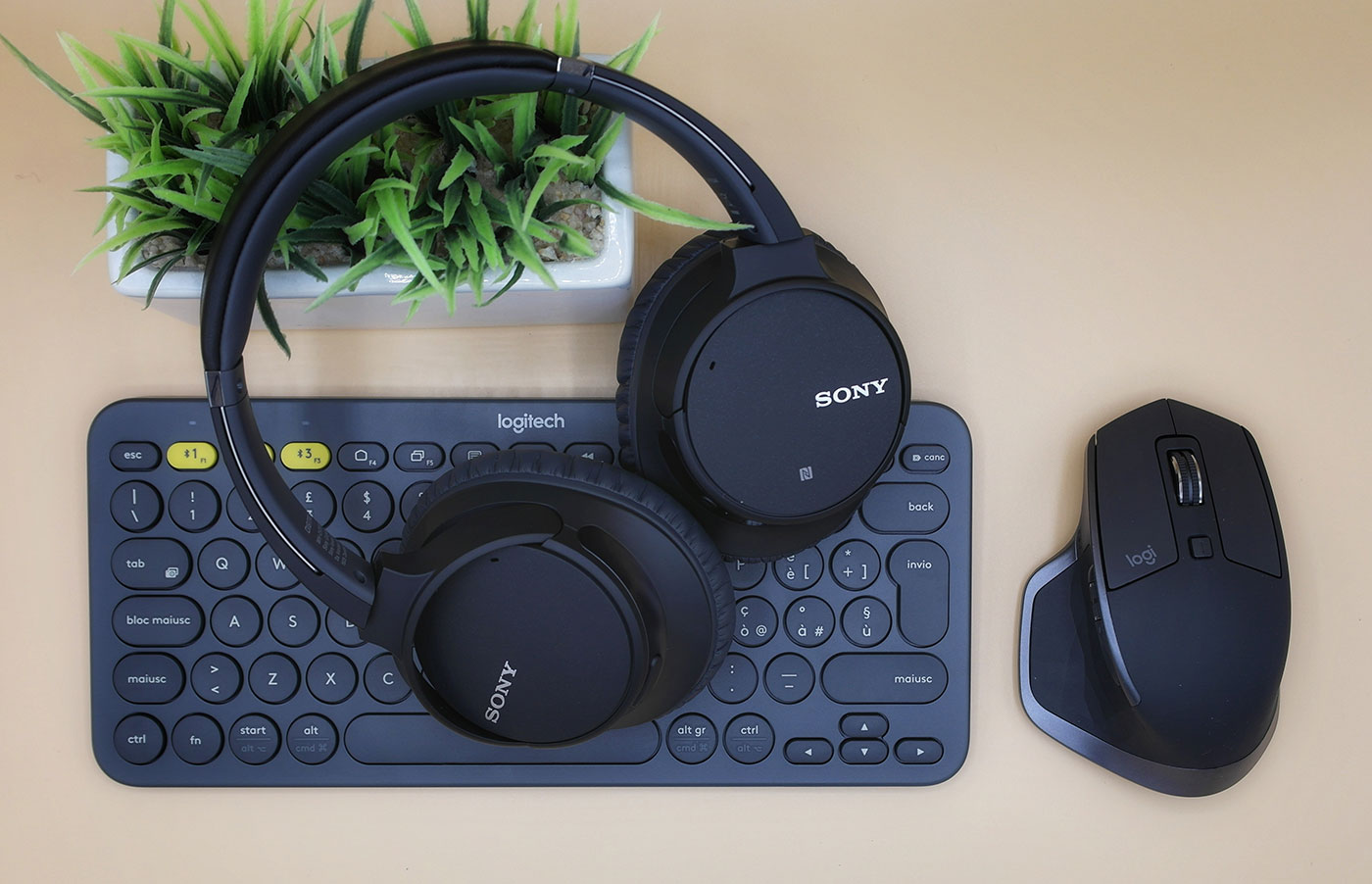 Purchasing-Electronics: a pair of headphones has been positioned on top of a keyboard and next to a mouse. In the picture, a green plant in a pot is also featured.