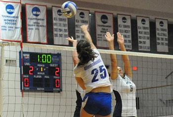 Division I games have been challenging but motivating for the River Hawks, led by student athletes like volleyball captain Carolyn Eddy, foreground. Photo by Bob Ellis
