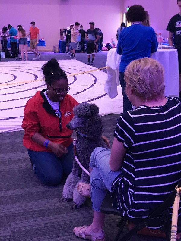A student spends time with a therapy dog on stress relief day