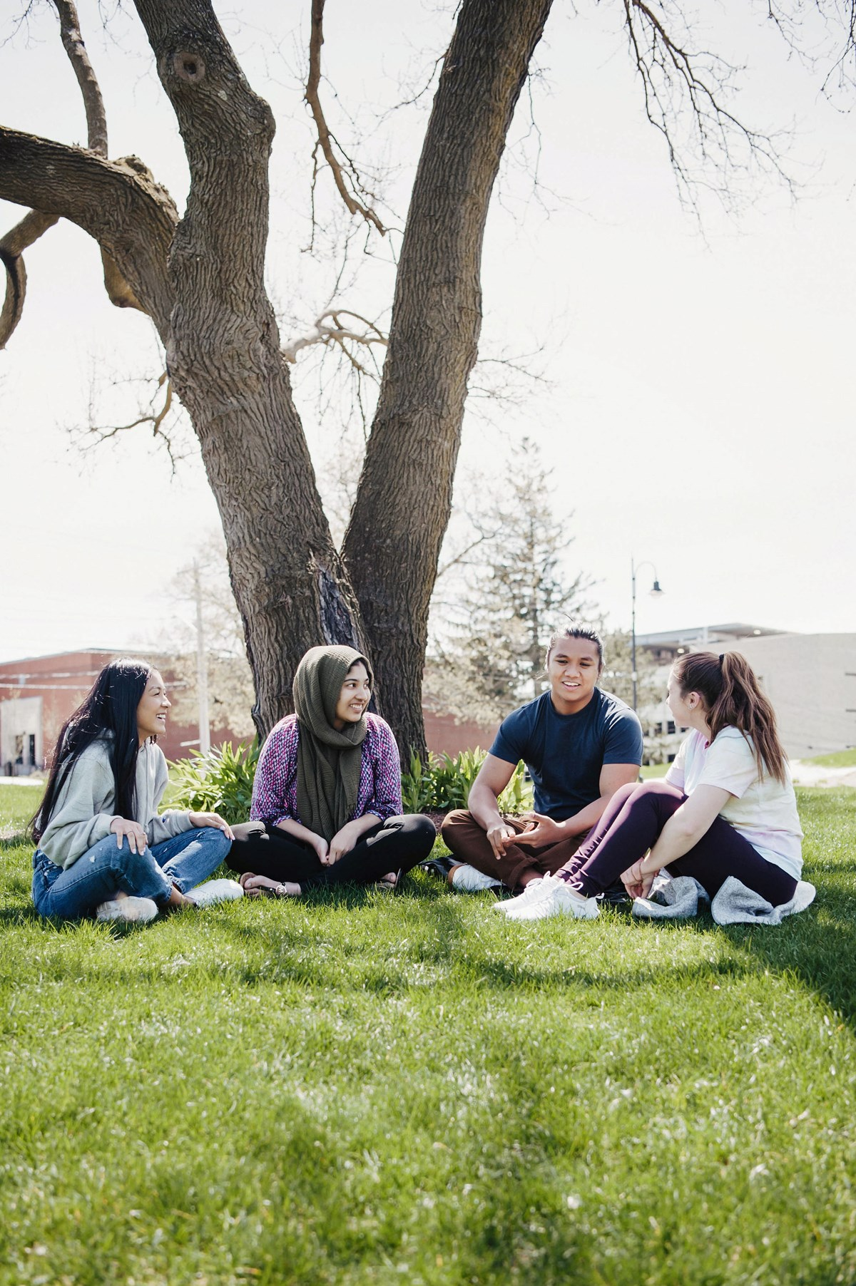 Students sit together in a group under a tree on South Campus.