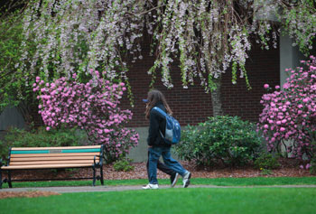 UMass Lowell's efforts to cultivate a sustainable landscape filled with healthy trees have been recognized by the Arbor Day Foundation.