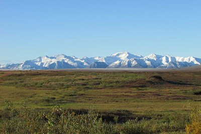 Photo of the arctic tundra ecosystem at Toolik Field Station with the Brooks Range in the background.