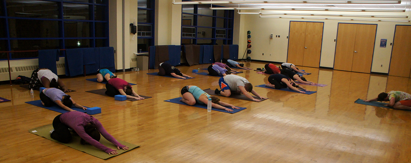 A group of women and men doing a yoga pose inside a studio.